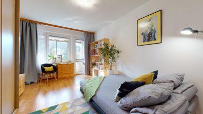 1-izbovy-byt-s-velkym-balkonom-na-predaj-02032021_181658